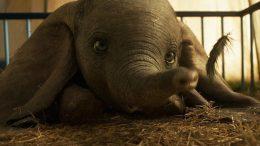 Dumbo di Tim Burton. cast e trama del film